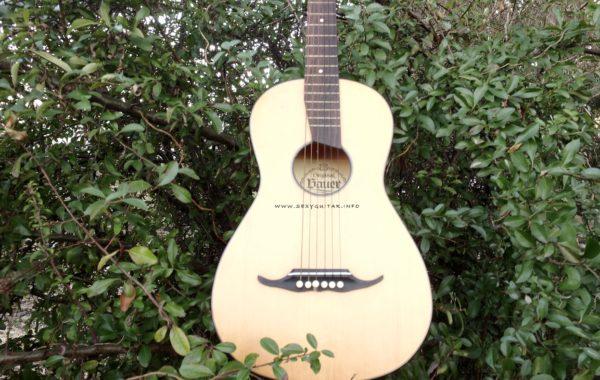 Bauer gitara barokowa(Барочная гитара)