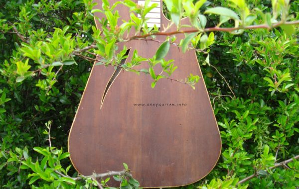 Kopoczek ALKO prototyp gitary