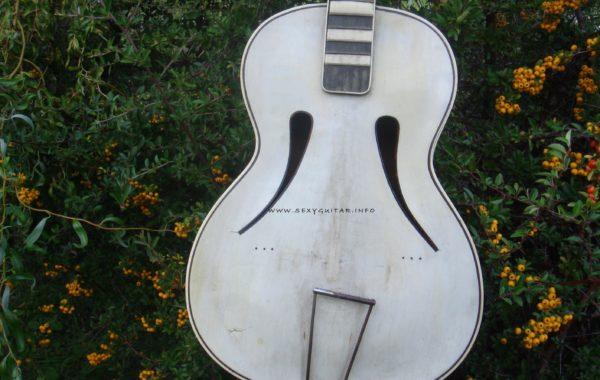 Gitara NN