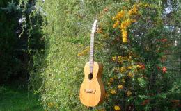 Guitar-6_003