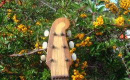 Guitar-6_005