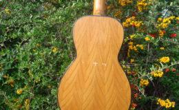 Guitar-6_009