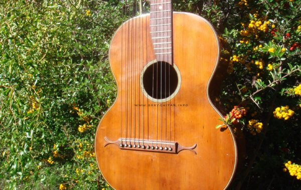 Harp-Guitar (1)