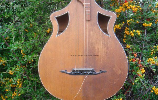 Wappen Guitar