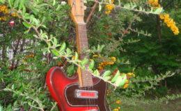 defil-mandolina-003