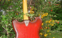 defil-mandolina-005