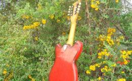 defil-mandolina-006
