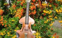 skrzypce -001