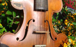 skrzypce–009