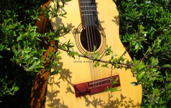 Rosyjska gitara