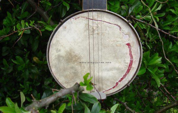 Banjo mini