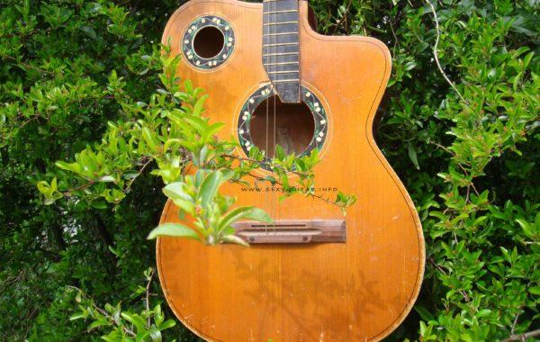 Gitara N N