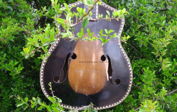 Cygańska Gitara(Zigeunergitarre)