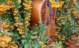 gitara secesyjna (5) – Kopia