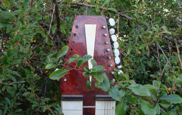 Hawaii-Gitarre