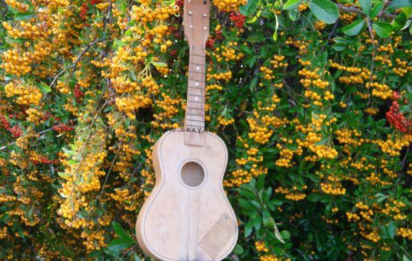 Gitara (m)