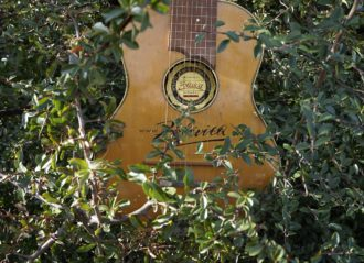 Zollaica Gitarre  10 strun