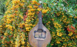 mandolina Volny (1)