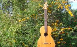 Guitar-6_001