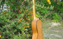 Guitar-6_002