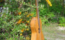 Guitar-6_006
