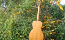 Guitar-6_007