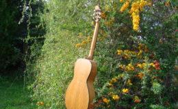Guitar-6_008