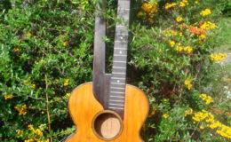 Harfo-Gitara_001