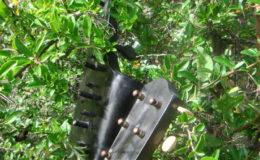 Harfo-Gitara_002