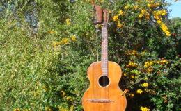 Harp_guitar-1_001