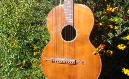 Harp_guitar-1_003