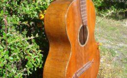 Harp_guitar-1_005