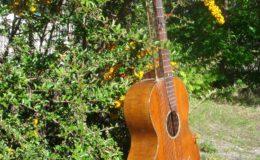 Harp_guitar-1_006