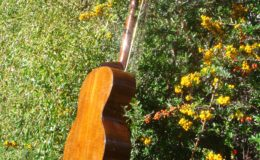 Harp_guitar-1_008