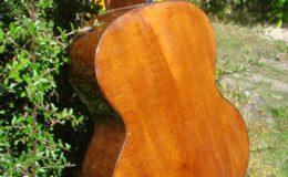 Harp_guitar-1_010