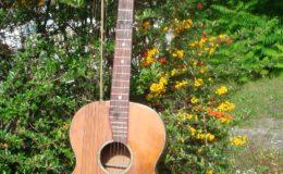 Harp_guitar-1_011