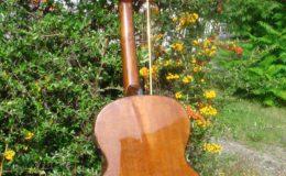 Harp_guitar-1_013