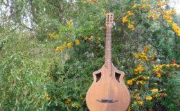 Wappen_Guitar_001