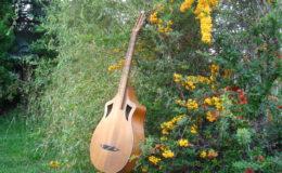 Wappen_Guitar_002