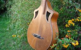 Wappen_Guitar_003