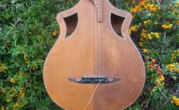 Wappen_Guitar_004
