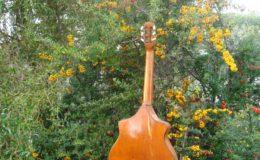 Wappen_Guitar_005