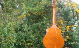 Wappen_Guitar_006