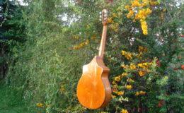 Wappen_Guitar_007