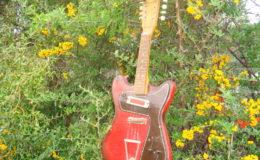 defil-mandolina-001