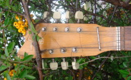 defil-mandolina-004