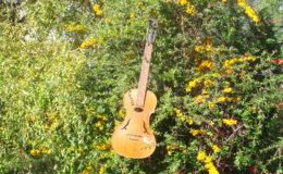 gitara-skrzypce_nn20_001