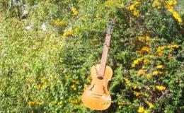 gitara-skrzypce_nn20_003