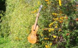 gitara-skrzypce_nn20_004