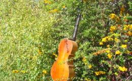 gitara-skrzypce_nn20_009